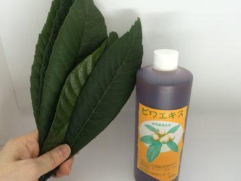 ビワの葉自然療法を学びませんか?
