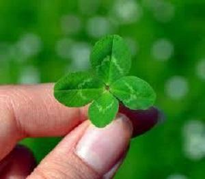 運の良い人と悪い人の違いは人生に対しての姿勢である